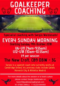 Goalkeeper Coaching Sessions…